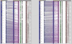 Compare whole chromosomes of Oryza sativa ssp. japonica andOryza sativa ssp.indica